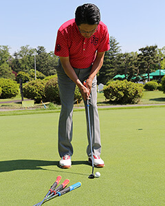 日本フェィウィック Golf Pride TOUR SNSR Series